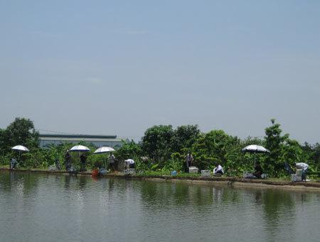 Cái nắng chói chang của mùa hè không làm ảnh hưởng tới niềm đam mê câu cá của các đại gia Hà thành.