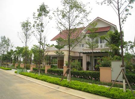 Những căn biệt thự nằm xen kẽ giữa hoa và cây xanh.