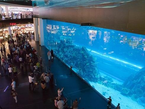 dubai mall 3 1367517722 500x0 Dubai Mall   Trung tâm mua sắm lớn nhất thế giới