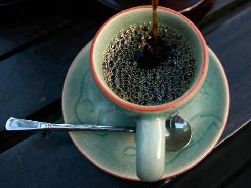 Quá trình thu hoạch cà phê Black Ivory