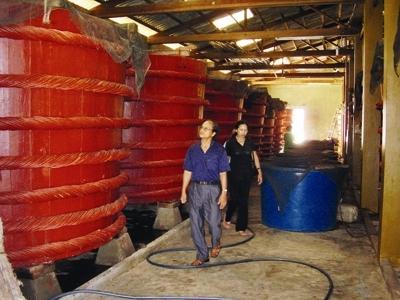Du khách tham quan một cơ sở sản xuất nước mắm trên đảo Phú Quốc. Ảnh: Tiền Phong