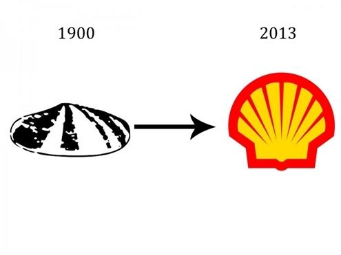 shell-1367718296_500x0.jpg