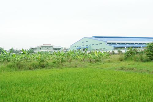 tai-san-Phuong-Nam-1507-1385217964.jpg
