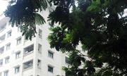 Hà Nội phải dừng phát triển nhà thương mại khu nội đô lịch sử