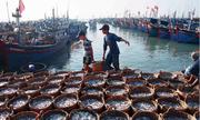Đổi cách tiếp cận để không lệ thuộc kinh tế vào Trung Quốc