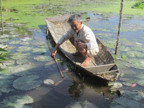Lão nông miền Tây kiếm tiền tỷ nhờ nuôi cá nước ngọt ở cửa biển