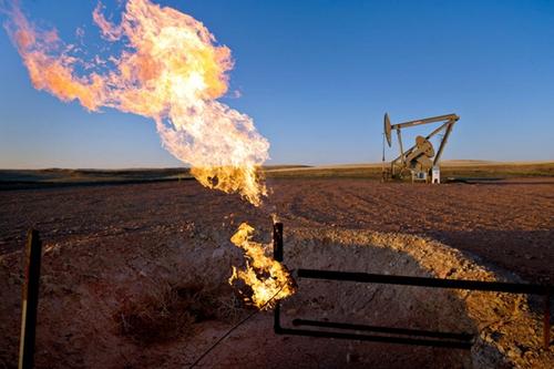 oil-6711-1417496510.jpg