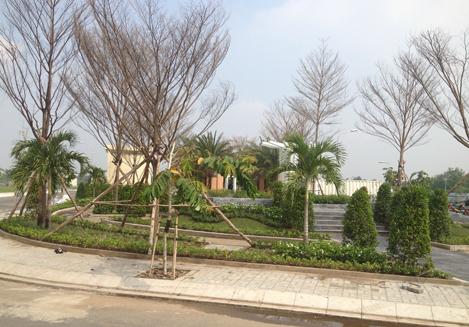 Dương Hồng Garden House đất nền giá từ 1,5 tỷ đồng