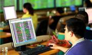 Vn-Index tăng hơn 14 điểm trong ngày giá xăng giảm kỷ lục