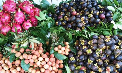 Nông sản Việt có thể xuất sang Thụy Sĩ