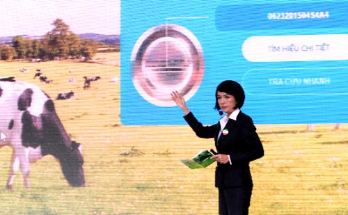 IMG 9215 JPG 4834 1440041250 Sữa bột có thể truy xuất nguồn gốc lần đầu xuất hiện ở Việt Nam nhahanghanoi.vn