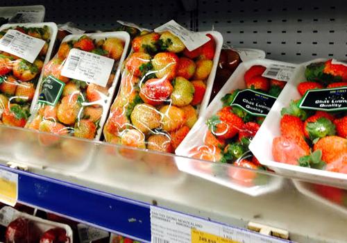Trái cây giống ngoại giá rẻ đắt khách 1