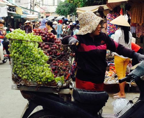 Người trồng nho Ninh Thuận thua lỗ vì hàng Trung Quốc 1