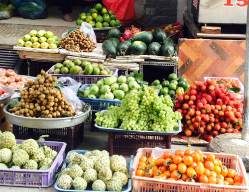 Người trồng nho Ninh Thuận thua lỗ vì hàng Trung Quốc 2