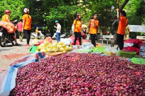 Hành, tỏi Lý Sơn bán đổ đống ở Hà Nội 1