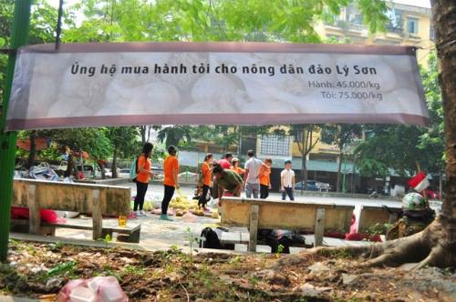 Hành, tỏi Lý Sơn bán đổ đống ở Hà Nội 2