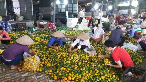 Chợ hoa quả đồng giá ở Hà Nội 2