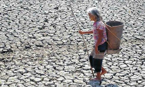 Hạn hán, ngập mặn khiến nông nghiệp Việt Nam tăng trưởng âm