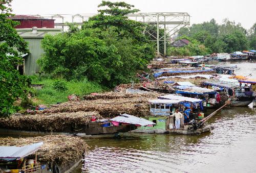 gia-duong-viet-nam-gap-doi-thai-lan
