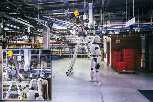 sieu-thi-truc-tuyen-o-anh-dung-robot-chuyen-rau-cu