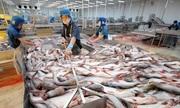 Hụt lợi nhuận cả trăm tỷ đồng, cổ phiếu Thủy sản Hùng Vương vào diện cảnh báo