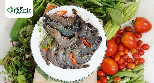san-phm-organic-tai-coopmart-2