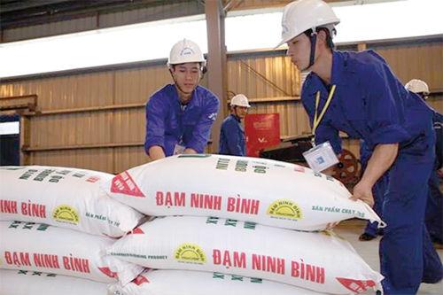 dam-ninh-binh-5051-1497977729.jpg