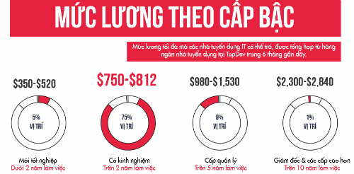 luong-it-viet-nam-co-the-dat-hon-64-trieu-moi-thang