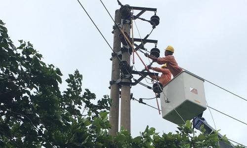 Nhiều đường điện gặp sự cố do bão
