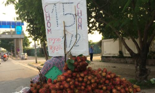 'Độc chiêu' kinh doanh hoa quả vỉa hè