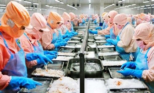 'Vua Tôm' Minh Phú trở lại thị trường chứng khoán