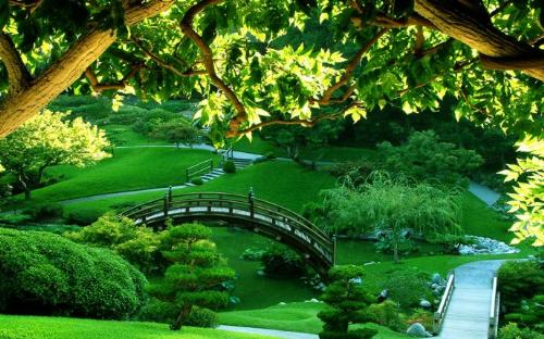 Căn hộ hướng công viên tốt cho sức khỏe tại The K - Park