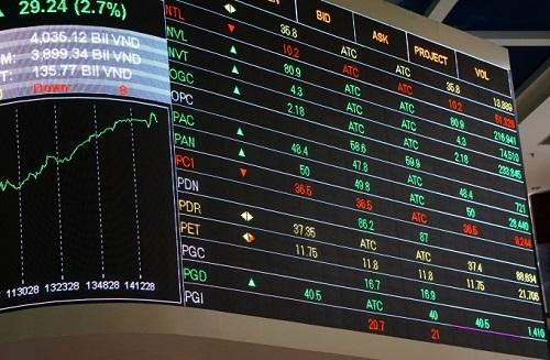 Nhà đầu tư hoang mang khi sàn HoSE tạm dừng giao dịch