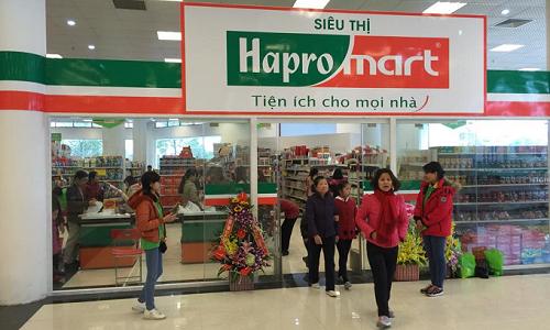 Tập đoàn BRG muốn thâu tóm Hapro