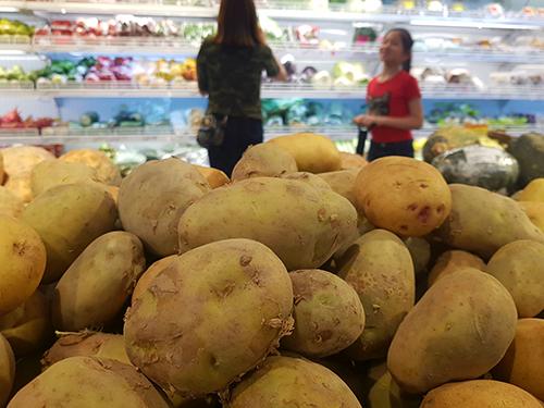 Trong khi tại vườn mỗi kg khoai tây được gom mua 3.000 - 4.000 đồng một kg thìgiá tại siêu thị18.000 - 20.000 đồng. Ảnh: H.T