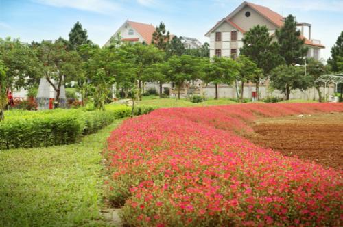 Gần 100 tiện ích tại biệt thự nghỉ dưỡng ngoại ô The Phoenix Garden