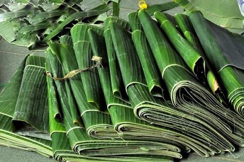Hiện tại, một số đơn vị cũng thu mua lá chuối đẹp tại vườn với giá 4.000 đồng/kg để xuất khẩu sang thị trường Mỹ. Lá chuối Việt Nam phải đạt tiêu chuẩn bề ngang rộng 30cm, lá liền mảnh, không rách, được xử lý sát trùng kỹ, đóng gói trước khi xuất khẩu.