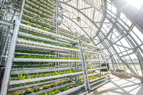 Nguồn nước của mô hình khổng lồ này được tiết kiệm nhờ hệ thống xử lý nước thải và bơm hồi lưu. Các máng chuyền động giúp các máng cây trồng trong một ngày sẽ tiếp xúc với nước dinh dưỡng 4 lần.