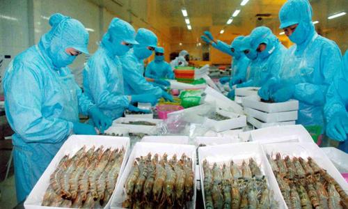 Tôm vẫn là mặt hàng thuỷ sản xuất khẩu mạnh nhất của Việt Nam.