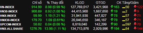 Thị trường trở lại sắc xanh, nhưng thanh khoản hai sàn chưa tới 4.000 tỷ đồng. Ảnh: SSI