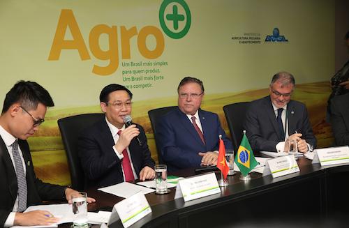 Phó thủ tướng Vương Đình Huệ làm việc với Bộ trưởng Nông nghiệp, chăn nuôi và cung ứng Brazil. Ảnh: VGP