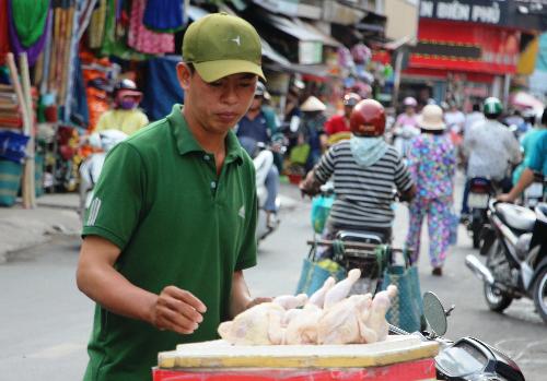 Gà mái đẻ thải loại bán vỉa hè 70.000 đồng một con