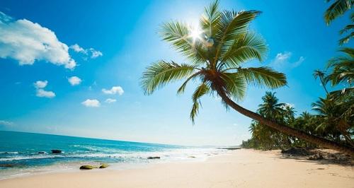 Cam Ranh có bãi biển đẹp trải dài, phù hợp phát triển các loại hình nhà đất nghỉ dưỡng, trong đây có nhà phố biển. Website: www.nhaphobiencamranh.vn. Hotline: 0933335856.