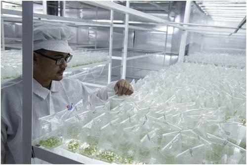 Elink luôn có sự đầu tư nghiêm túc và áp dụng công nghệ tân tiến của Nhật Bản vào trong quá trình sản xuất.