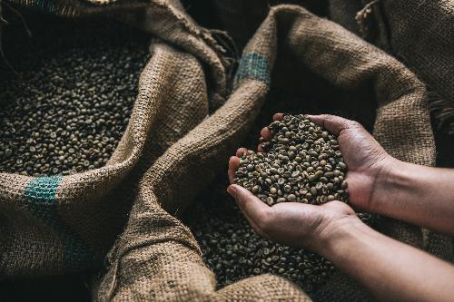 Cà phê - lĩnh vực đầy tiềm năng và nhiều thách thức của NutiFood