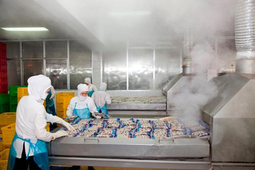 Dây chuyền đóng gói tại một nhà máy sản xuất thực phẩm.