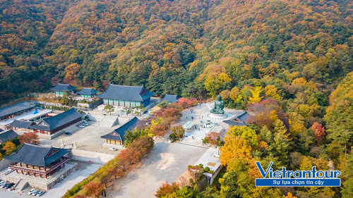 Tham quan cảnh thu đẹp vô song ở núi Seorak theo tour Hàn Quốc của Vietrantour.