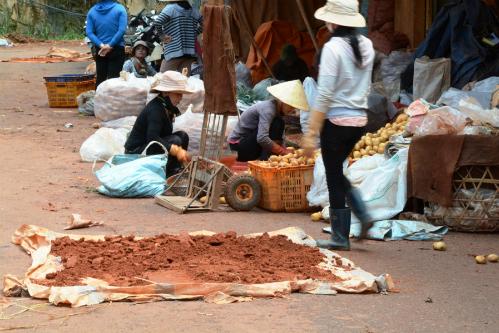 Chợ nông sản Đà Lạt chỉ được giao dịch nông sản địa phương