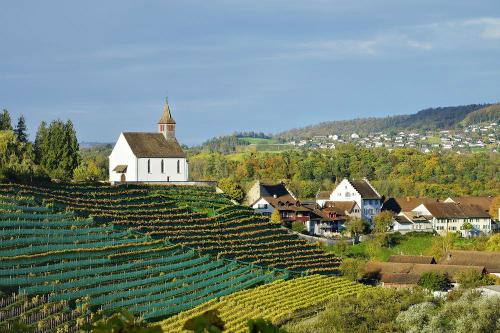 Một góc làng Rheinau ở Thụy Sỹ. Ảnh: AFP