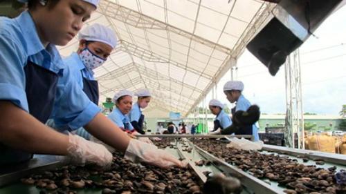 Mỹ chi 22 triệu USD kết nối doanh nghiệp Việt Nam với quốc tế